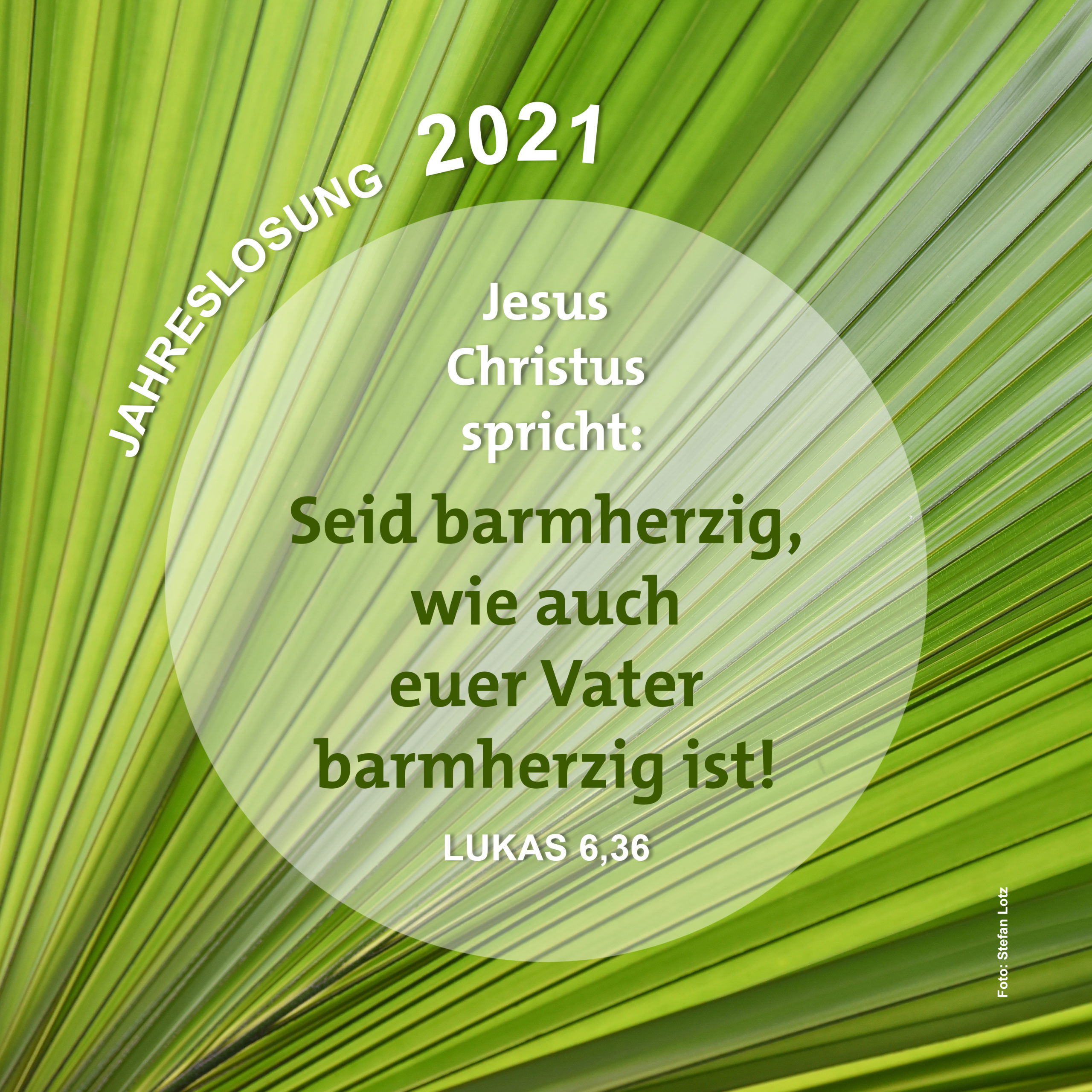 Jahreslosung 2021